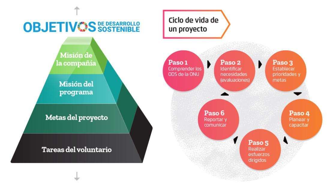 Los Planes de Gestión con metas claras nos ayudan a estructurar la labor de nuestros voluntarios.